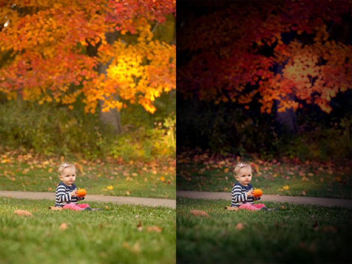 Autumny2.jpg.cbaf13d9405c3cabd3a9129e252