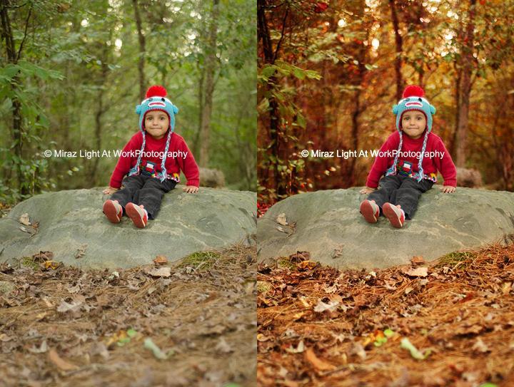 Autumny3.jpg.57a0eaa7ae48caa50ee1f60f6fc