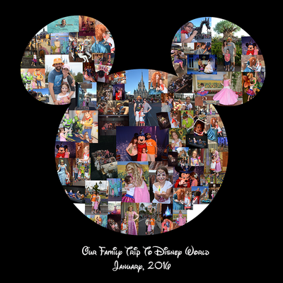 Mickey-Collage---2016.png