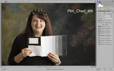 Plm_Chart_Wb_Raw.thumb.jpg.ffc572314de724584d8821652ae25a33.jpg